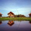 majuli-cottage